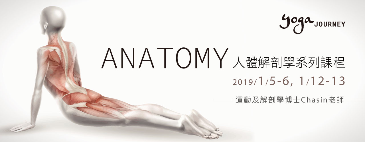 2019 YOGA ANATOMY
