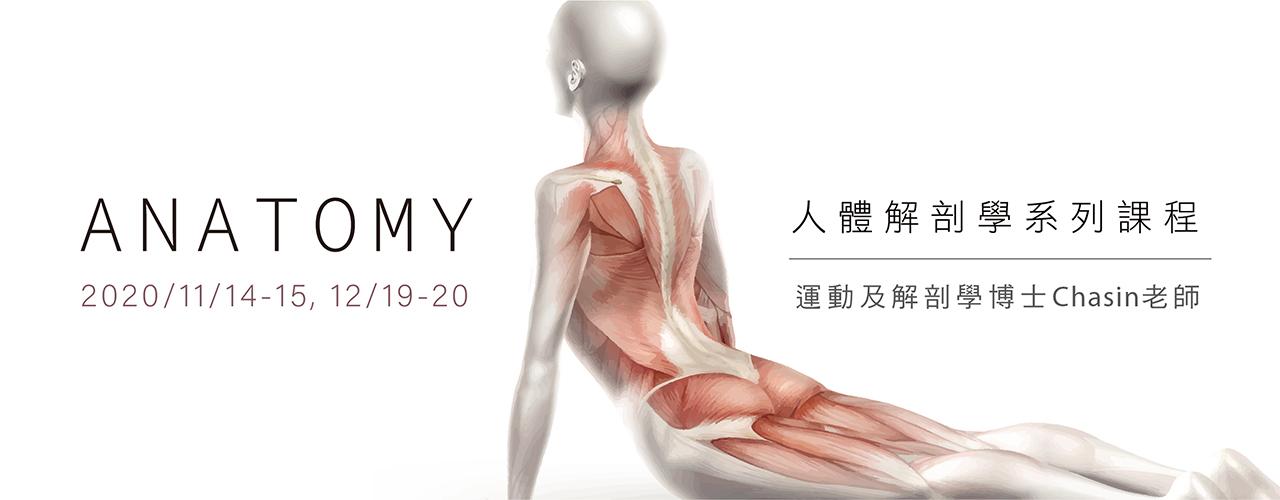 解剖學_瑜珈課程