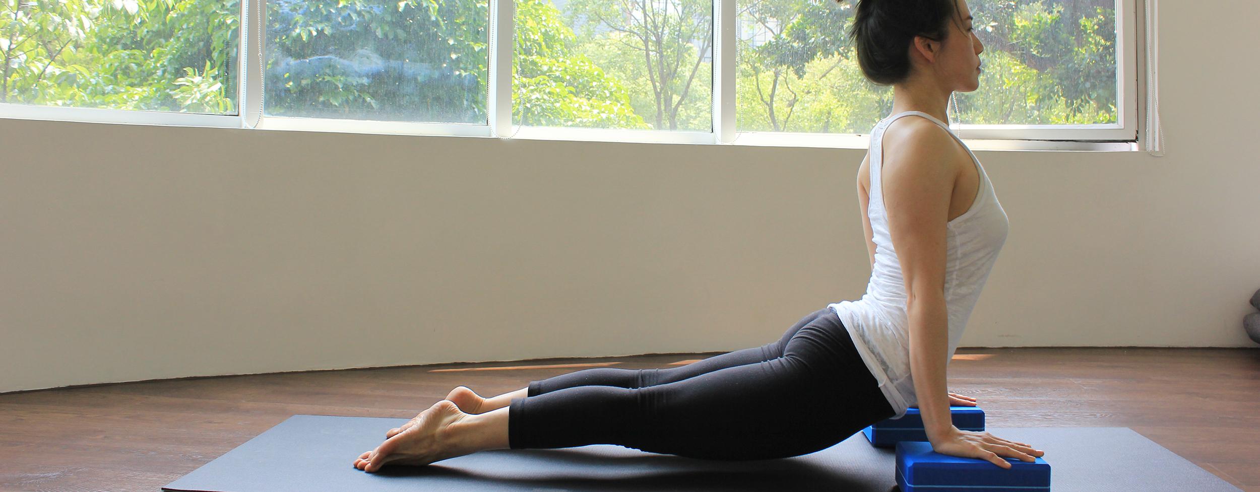 Yoga Journey  yoga