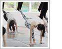 空中瑜珈初學者課程
