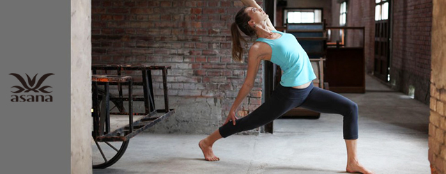 Yoga Journey x asana